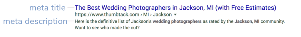example of meta title and description in search results