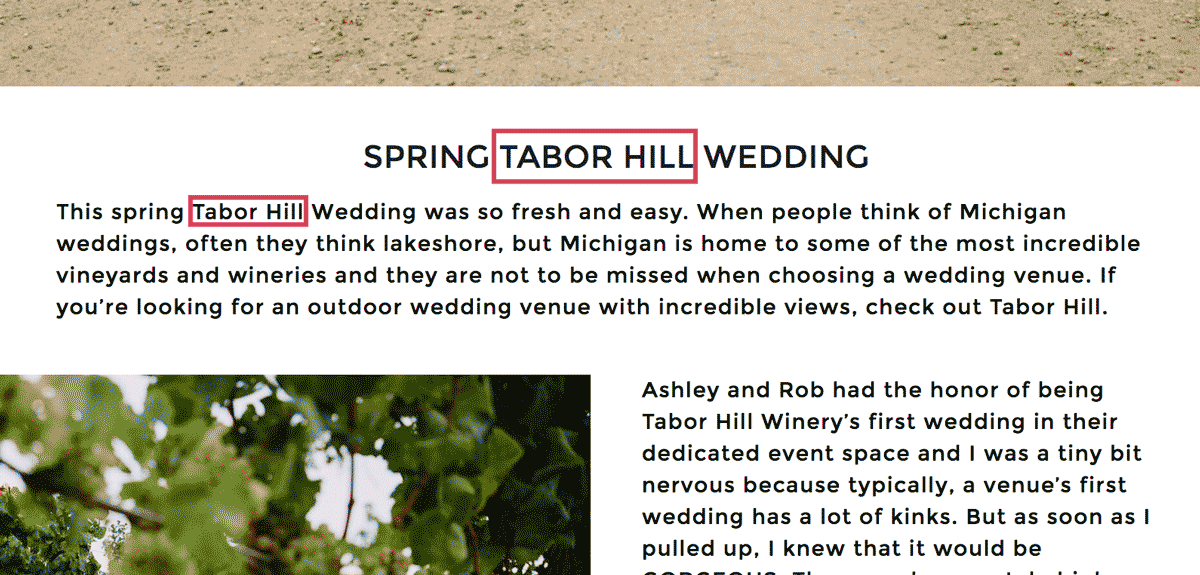 wedding photographer blog seo example